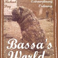'Bassa's World'